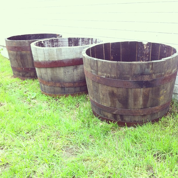 Raised Bed a la Whiskey Barrels
